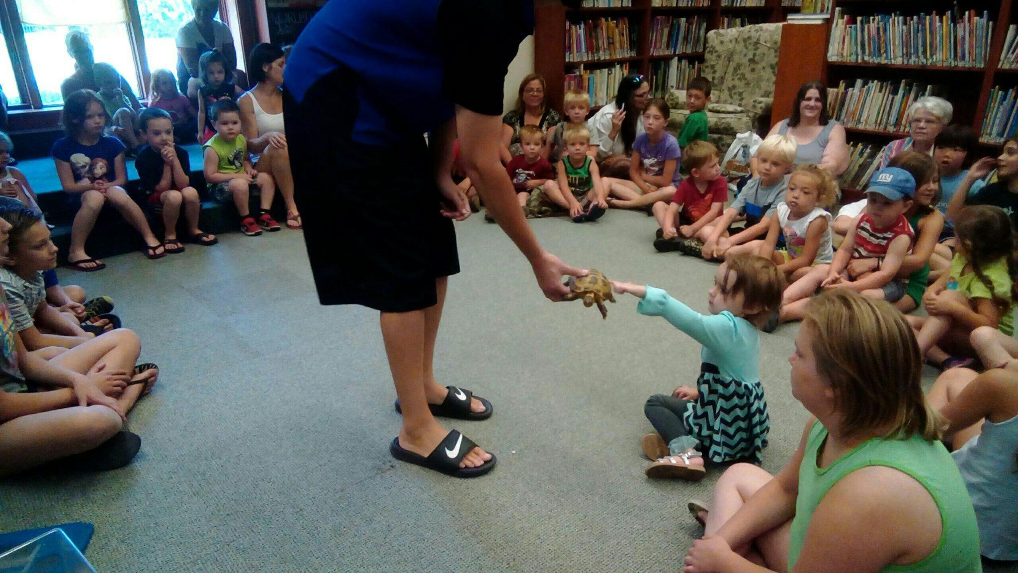 Meeting Tanglewood's tortoise