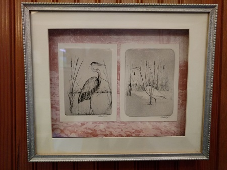 Year of the Bird Presentation @ Watkins Glen Public Library